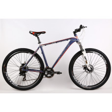29 DISCOVERY MTB